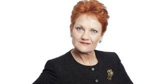 Although she had a passion for politics, Pauline found her true calling in the world of prosthetic norks.