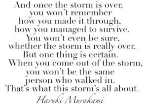 storm poem